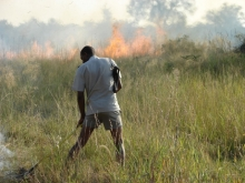 Fire management in Bwabwata National Park. Photo: Simon Mayes