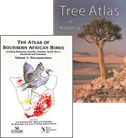Species lists for trees and birds were compiled from data in the Tree Atlas of Namibia and the Southern African Bird Atlas Project.