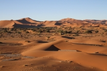 Dunes at Sossusvlei. Photo: Tony Robertson